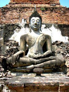 Free Sukhothai Buddha Royalty Free Stock Photography - 7013427