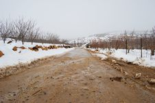 Free Snowy Road Stock Images - 7013554