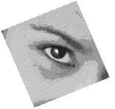 Free Woman Eye Stock Photos - 7013613