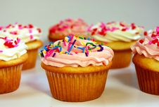 Free Pink And White Cupcakes Royalty Free Stock Image - 7013696