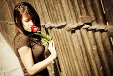 Free Woman Smelling Rose Over Fence Stock Photo - 7014020