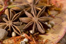 Star Anice And Other Spices Royalty Free Stock Photo