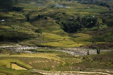 Rice Terraces And River Stock Photo
