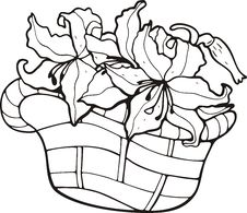 Free Floral Basket Stock Photography - 7016692
