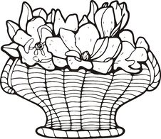 Free Floral Basket Royalty Free Stock Images - 7016699