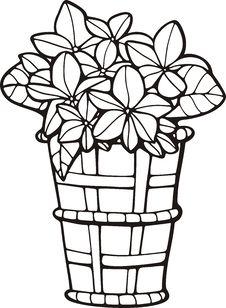 Free Floral Basket Stock Photo - 7016700