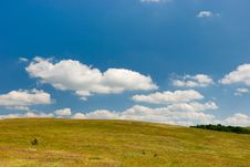 Free Meadow Stock Image - 7017821