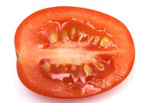 Free Tomato Stock Photo - 7019900