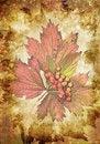Free Grunge Texture Royalty Free Stock Image - 7026816