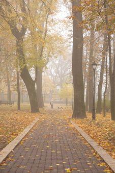 Free Autumn Park Royalty Free Stock Image - 7020716
