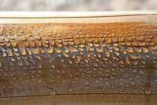 Free Drips Of Morning Dew On A Wooden Handrail Royalty Free Stock Photography - 7020837
