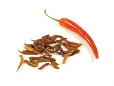 Free Chili, Dried. Royalty Free Stock Image - 7021026