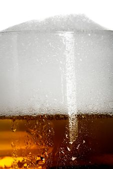 Free Fresh Amber Beer With Froth In A Glass Stock Photos - 7024573