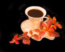 Free Cup Coffee With Autumn Branch Stock Photos - 7026403