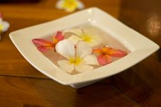 Flower Petals In A Bowl At A Spa Royalty Free Stock Image