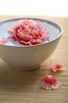 Free Flower Floating In White Bowl Stock Images - 7029014