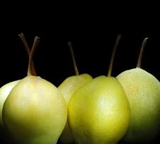 Free Pears Stock Images - 7031834
