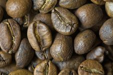 Free Brazilian Coffee Royalty Free Stock Image - 7032156