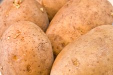 Free Potato Stock Photo - 7037890