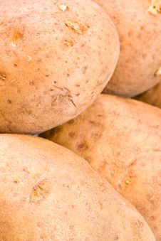 Free Potato Royalty Free Stock Photography - 7037897