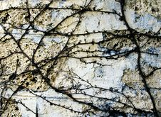 Free Close Up On Old Wall Stock Images - 7038204