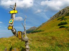 Tourist Guidepost In Mountains Stock Photography
