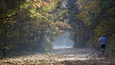 Free Fall Trail Stock Photography - 7039522