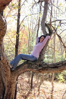 Free Pretty Teen Reclining On A Large Tree Branch Stock Photos - 7039543