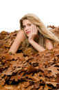 Free Sexy Blond Woman Lying In Autumn Leaves Royalty Free Stock Images - 7047049