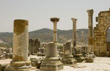 Free Roman Columns At Volubilis, Morocco Royalty Free Stock Photos - 7040018