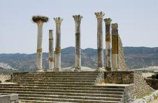 Free Roman Columns At Volubilis, Morocco Royalty Free Stock Photos - 7040118