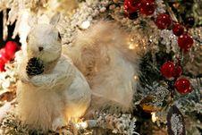 Free White Squirrel Royalty Free Stock Photos - 7040158