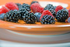 Free Fresh Assorted Berries On Plate Royalty Free Stock Photo - 7040165