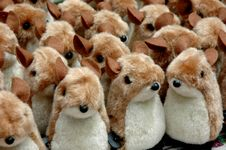 Free Many Squirrel Doll Stock Photo - 7040170
