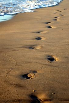 Free Footsteps On The Beach Stock Photography - 7041172
