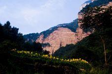 Free Morning Of Zhangshiyan Mountain Royalty Free Stock Photography - 7041367