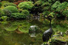 Free Reflections At A Lake Royalty Free Stock Photo - 7042135