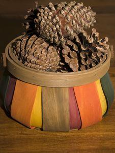 Free Basket Of Pinecones2 Royalty Free Stock Photos - 7044938