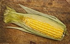 Corn On The Cob. Royalty Free Stock Photos