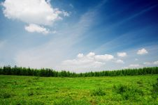 Free Grassland Royalty Free Stock Photos - 7048678