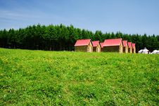 Free House In Grassland Stock Photo - 7048730