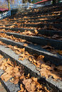 Free Autumn Step Stock Images - 7051694