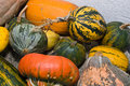 Free Colorful Pumkins Stock Photos - 7056273