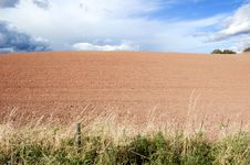 Free Agricultural Field Royalty Free Stock Photography - 7051267