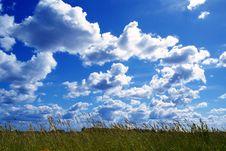 Free Summer Sky Stock Photo - 7052640