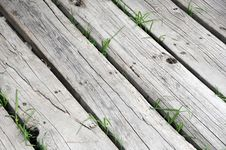 Free Wooden Walkway Royalty Free Stock Image - 7052906
