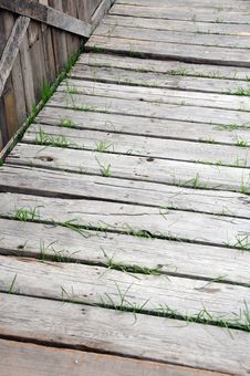 Free Wooden Walkway Stock Image - 7052991