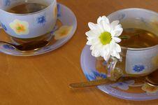 Free Tea Royalty Free Stock Photo - 7054575