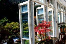 Free Autumn Window Stock Photos - 7055563
