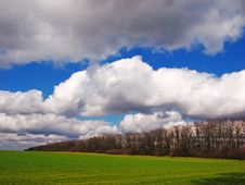 Free Spring Field Stock Photography - 7056882